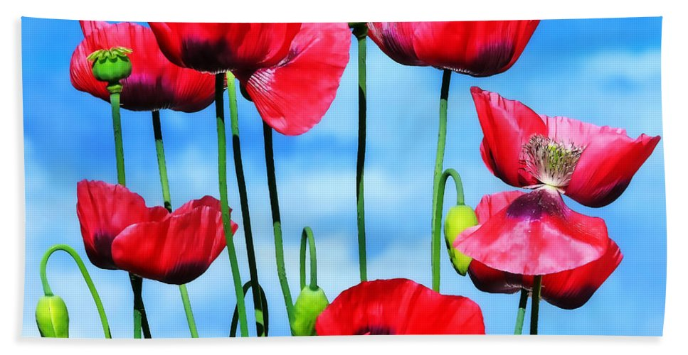 Poppies Hand Towel featuring the photograph Poppies by Susie Peek