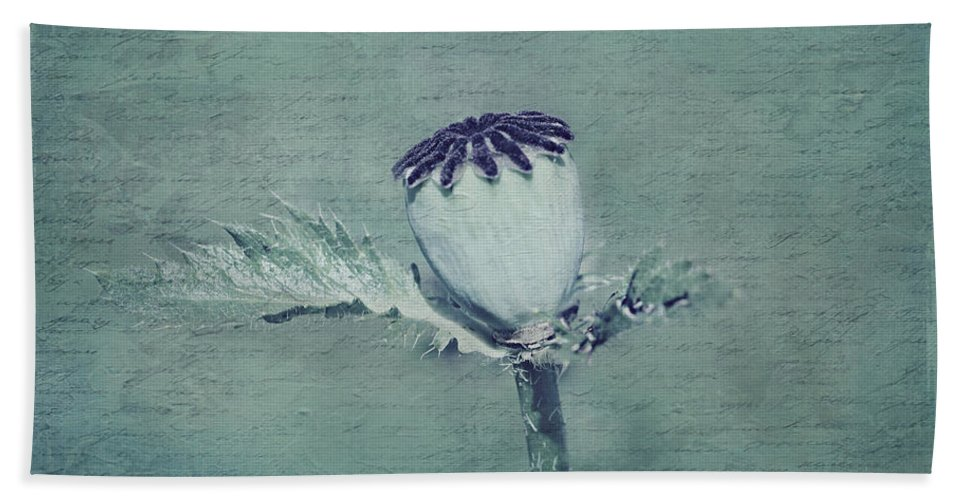 Still Life Bath Sheet featuring the photograph Poppy Still Life by Heike Hultsch