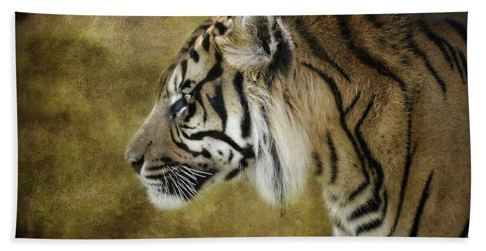 Sumatran Tiger Bath Towel featuring the photograph Portrait Of A Tiger by Saija Lehtonen