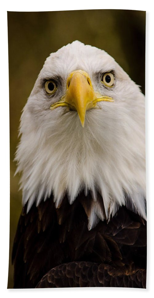 Eagle Bath Towel featuring the photograph Portrait Of An Eagle by Jordan Blackstone