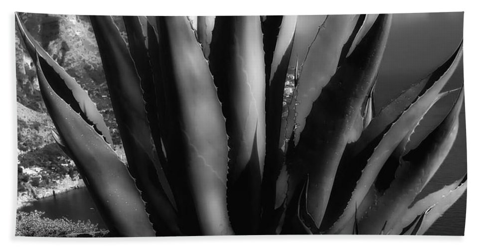 Positano Hand Towel featuring the photograph Positano Agave Bw by Mike Nellums