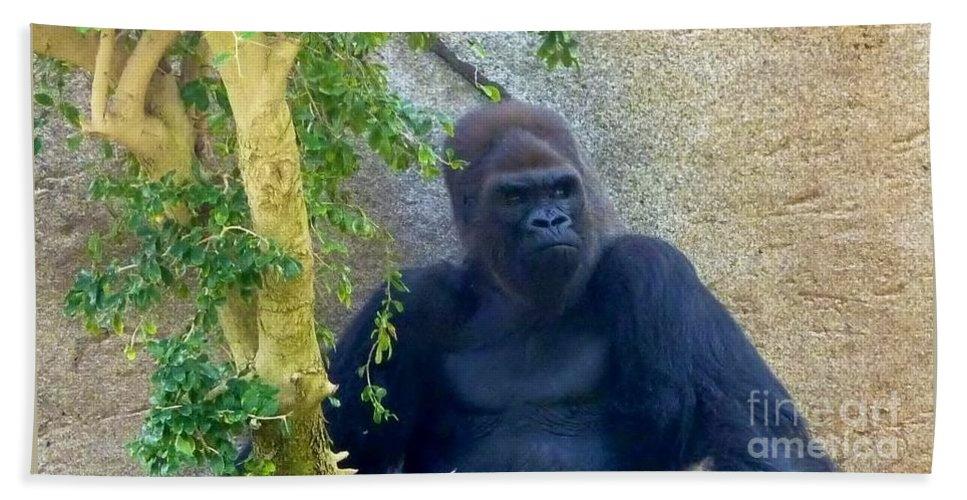 Female Grandmother Gorilla Hand Towel featuring the photograph Powerful Female Gorilla by Susan Garren