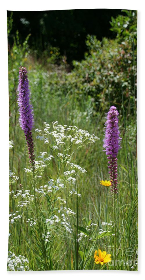 Flower Bath Sheet featuring the photograph Prairie Blossoms by Susan Herber