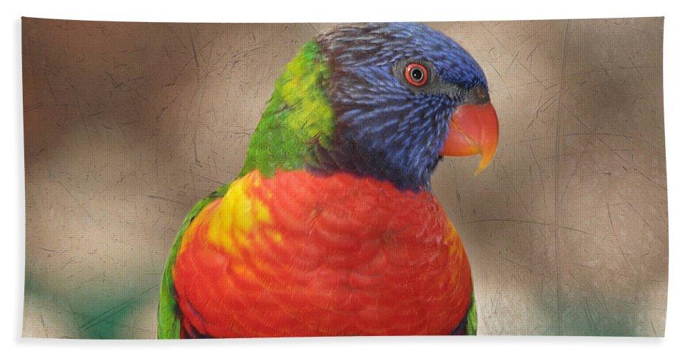Lorikeet Bath Towel featuring the photograph Pretty Bird - Rainbow Lorikeet by Kim Hojnacki