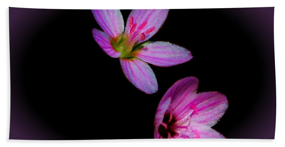 Flower Hand Towel featuring the photograph Pretty In Pink by John Absher