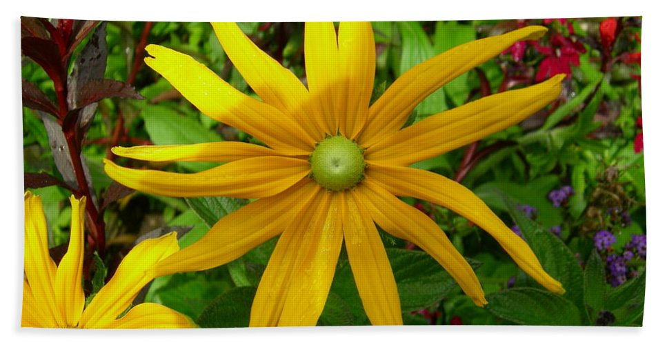 Yellow Hand Towel featuring the photograph Pretty In Yellow by Donato Iannuzzi