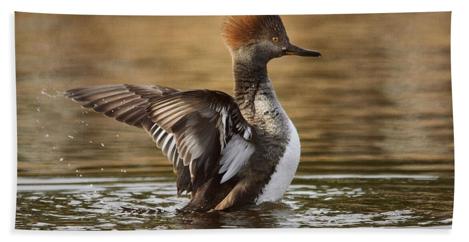 Duck Hand Towel featuring the photograph Pretty Little Redhead by Susan Capuano