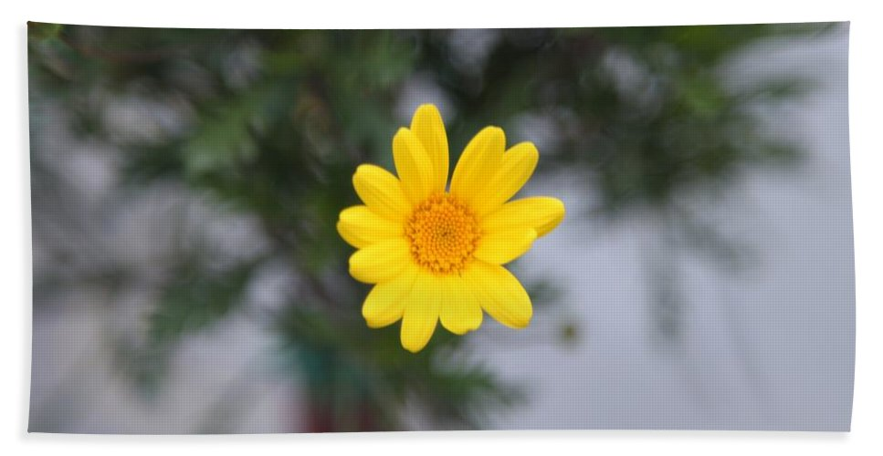 Black Eyed Susan Bath Sheet featuring the photograph Pretty Yellow Flower by Michael French