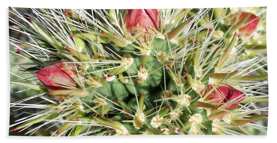 White Tanks Hand Towel featuring the photograph Prickly Pleasure by Laurel Powell