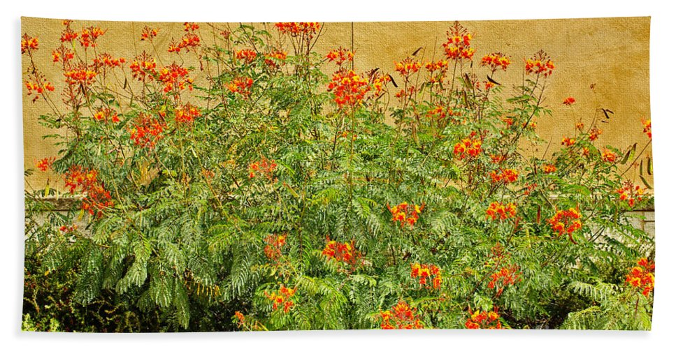 Pride Of Barbados Hand Towel featuring the photograph Pride Of Barbados by Gary Richards