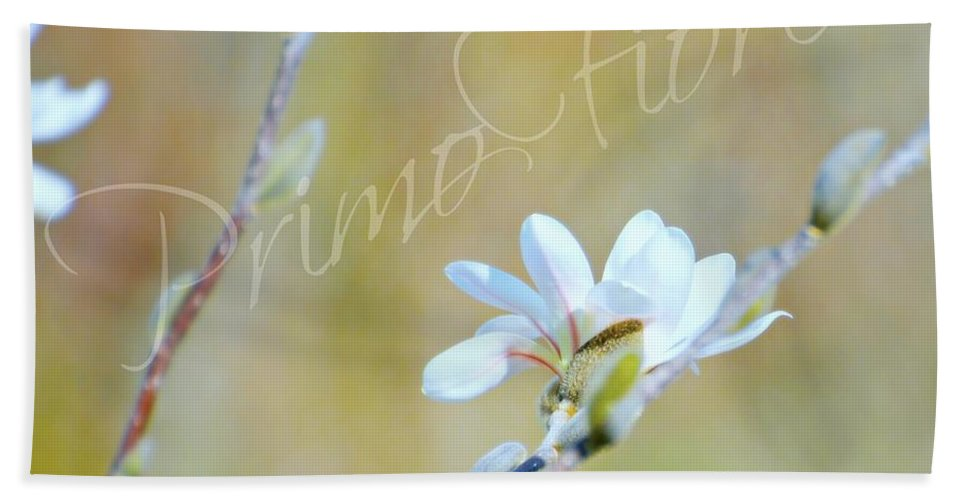 Flower Hand Towel featuring the photograph Primo Fiore by Diana Angstadt