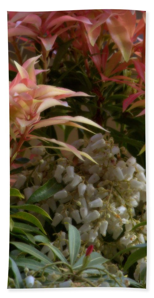 Bush Bath Sheet featuring the photograph Profusion Of Floral Beauty by Jeanette C Landstrom