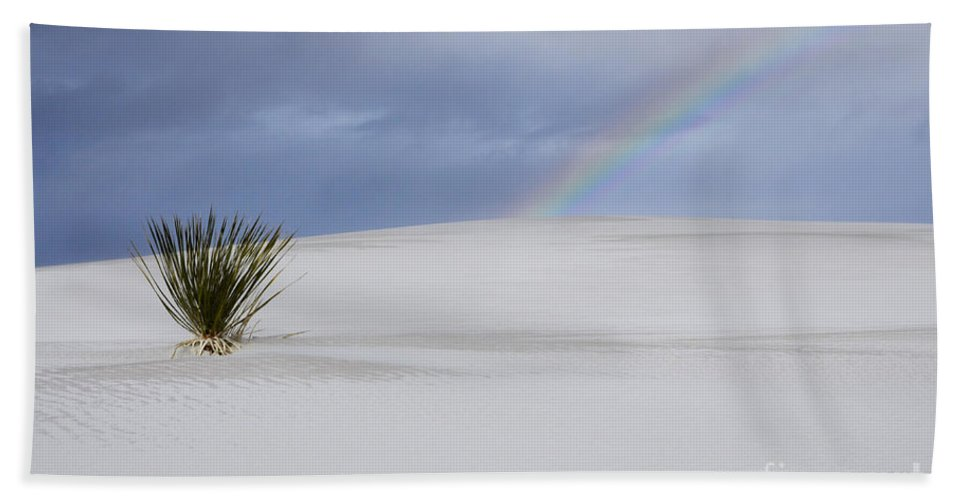 Alamagordo Hand Towel featuring the photograph Promise Of New Mexico by Bob Christopher