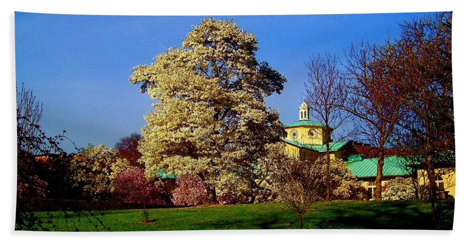 Brooklyn Prints Bath Sheet featuring the photograph Prospect Park In Brooklyn II by Monique's Fine Art