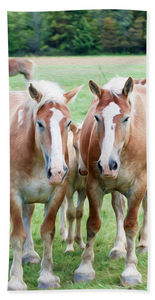 Horses Hand Towel featuring the photograph Protective by Tracy Winter