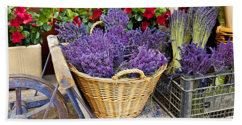 Lavender Bath Sheet featuring the photograph Provence Lavender by Brian Jannsen