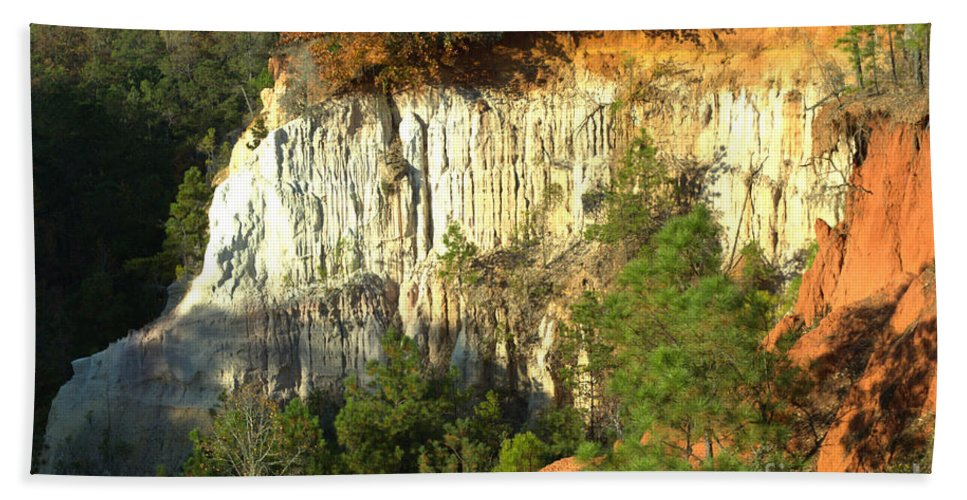Canyon Hand Towel featuring the photograph Providence Canyon State Park by Donna Brown