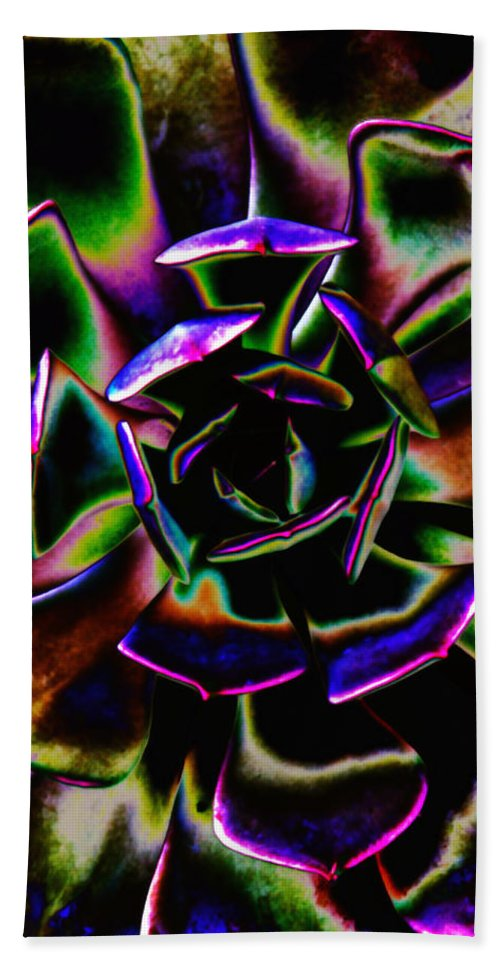 Rubber Tree Plant Hand Towel featuring the photograph Psychedelic Rubber Plant by Joseph Hedaya
