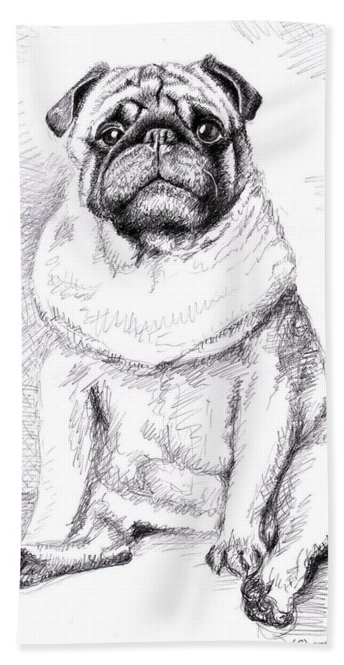 Dog Bath Sheet featuring the drawing Pug Anton by Nicole Zeug