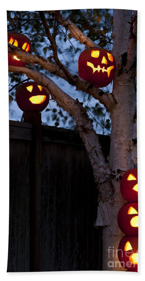 31st Bath Sheet featuring the photograph Pumpkin Escape Over Fence by Jim Corwin