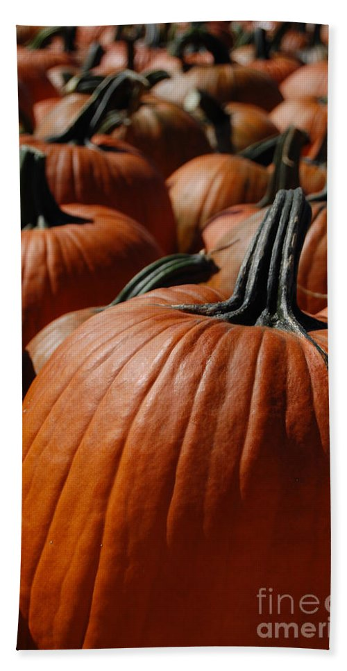 First Star Art Bath Sheet featuring the photograph Pumpkin Harvest 1 by First Star Art