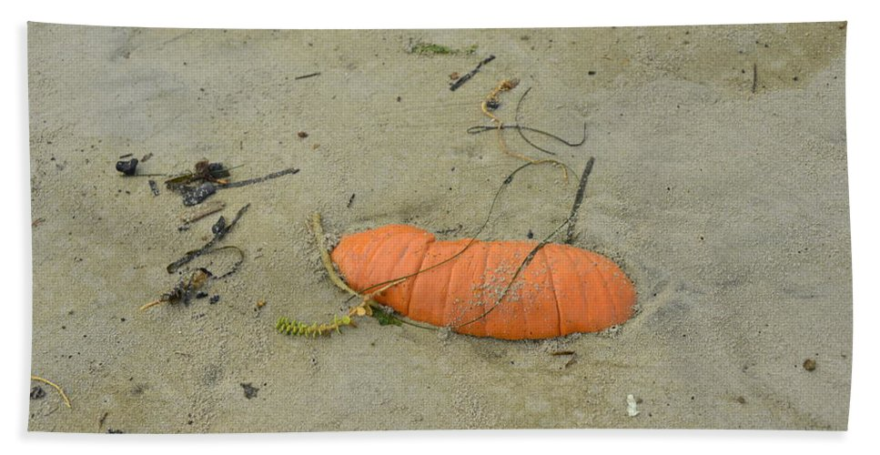Yachats Bath Sheet featuring the photograph Pumpkin In The Sand by Image Takers Photography LLC - Laura Morgan