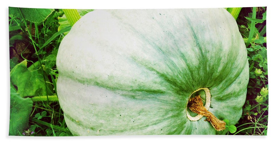 Agriculture Bath Sheet featuring the photograph Pumpkin by Les Cunliffe