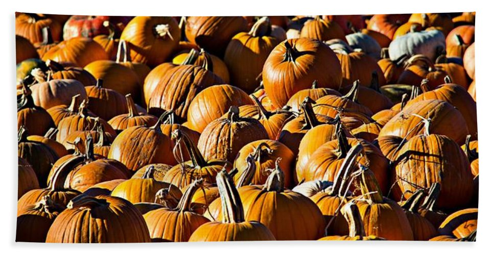 Pumpkins Hand Towel featuring the photograph Pumpkin Patch by Aaron Berg