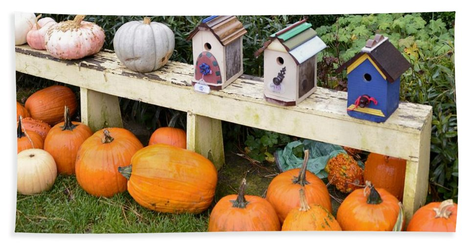 Hood River Bath Sheet featuring the photograph Pumpkins And Birdhouses by Image Takers Photography LLC - Carol Haddon