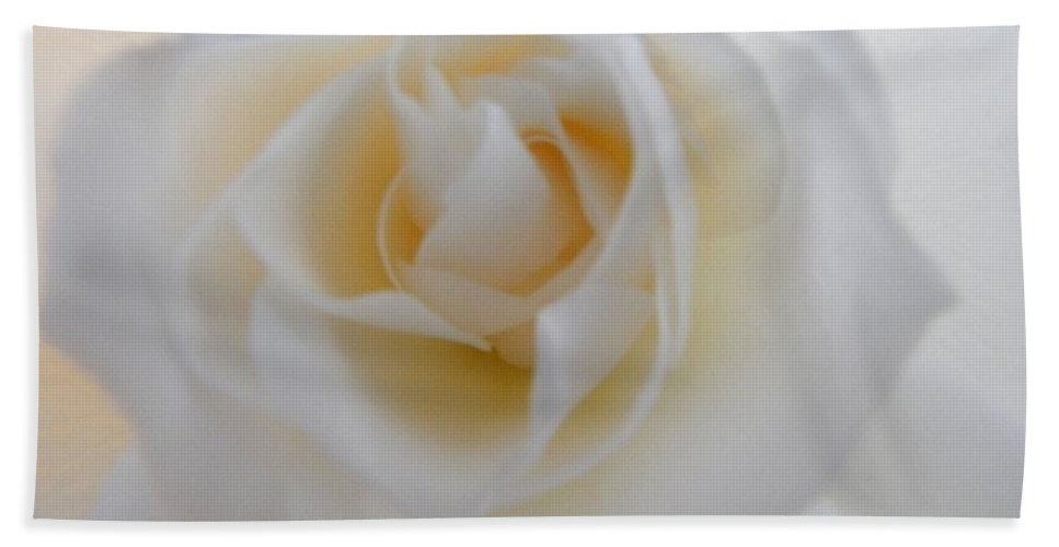 Rose Bath Sheet featuring the photograph Purity by Deb Halloran
