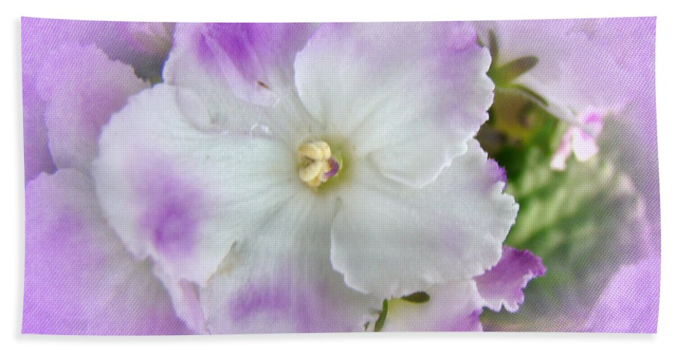 Violet Hand Towel featuring the photograph Purple And White Fancy African Violets by Mother Nature
