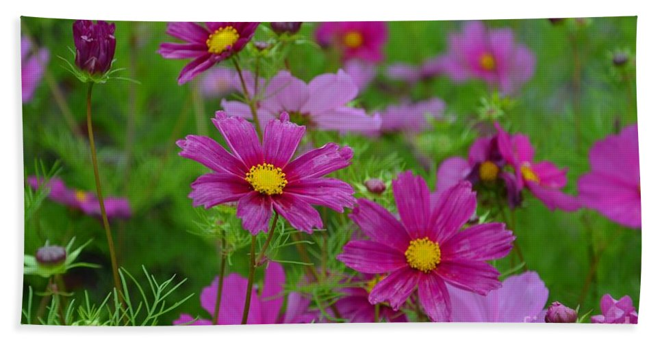 Flowers Bath Sheet featuring the photograph Purple Beauty by Deanna Cagle