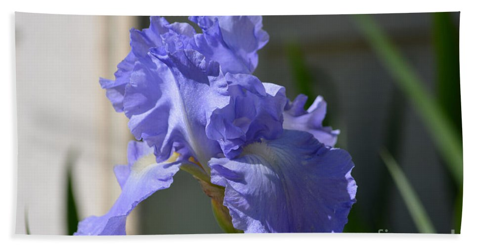 Purple Beauty Iris Prints Hand Towel featuring the photograph Purple Beauty Iris by Ruth Housley