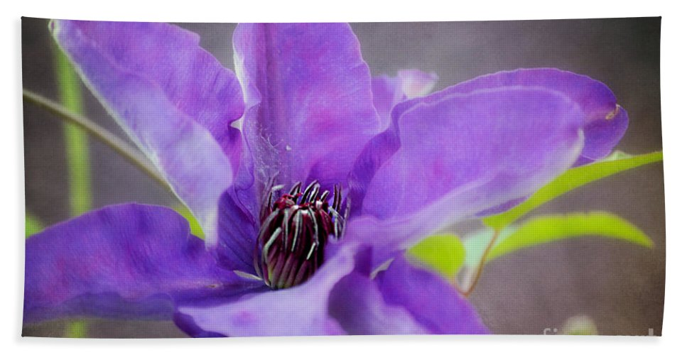 Clematis Macro Bath Sheet featuring the photograph Purple Clematis Close Up by Peggy Franz