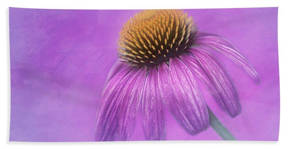 Purple Coneflower Bath Sheet featuring the photograph Purple Coneflower - Echinacea Purpura by Nikolyn McDonald