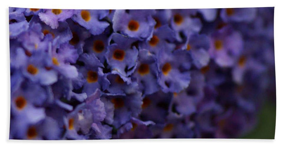 Purple Bath Towel featuring the photograph Purple Flowers 2 by Carol Lynch