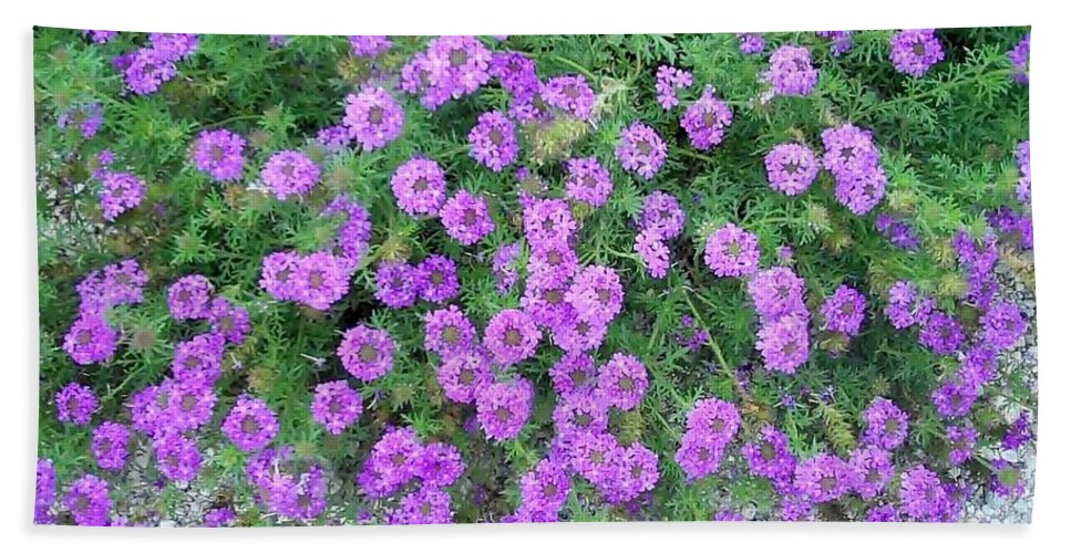 Purple Bath Sheet featuring the photograph Purple Flowers by Cindy New