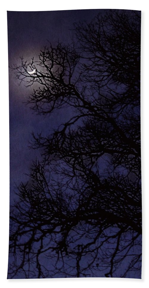 Moon Bath Sheet featuring the photograph Purple Nights by Melanie Lankford Photography