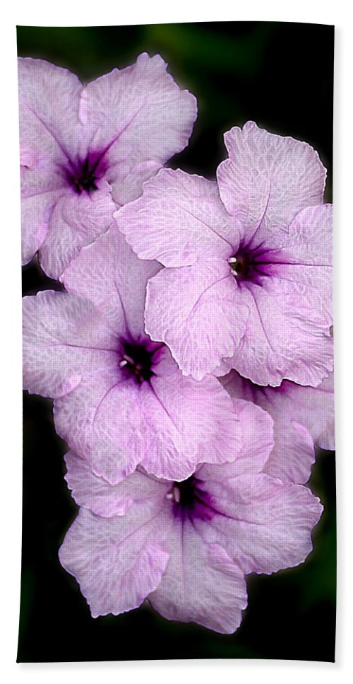 Flowers Hand Towel featuring the photograph Purple Passion by Doug Heslep