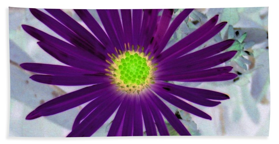 Flower Hand Towel featuring the photograph Purple Passion - Photopower 1605 by Pamela Critchlow