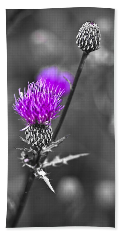 Selective Color Hand Towel featuring the photograph Purple by Samantha Eisenhauer