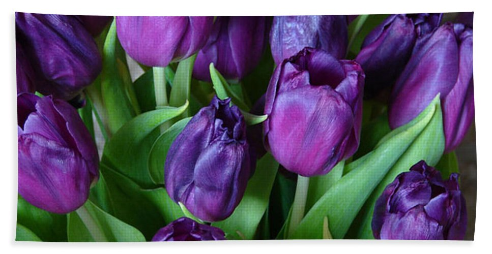 Purple Hand Towel featuring the photograph Purple Tulips by Carol Lynch