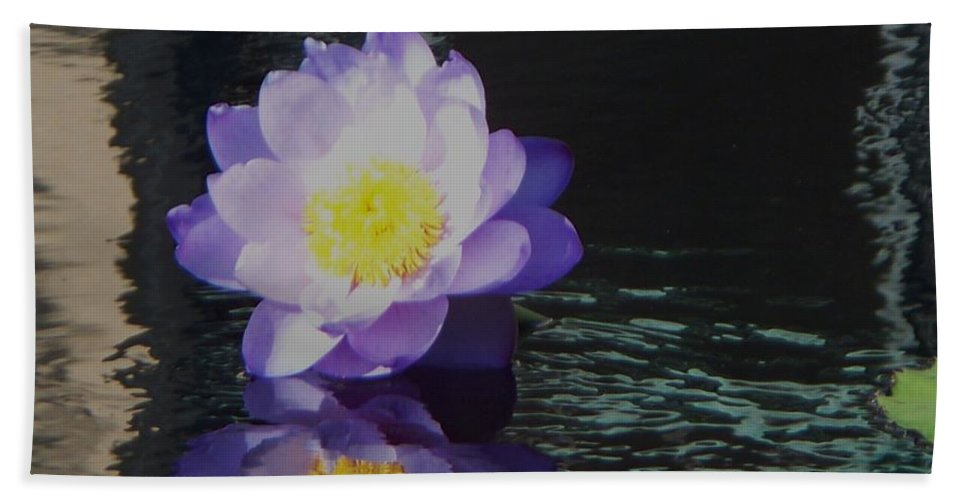 Photograph Bath Sheet featuring the photograph Purple White Yellow Lily by Eric Schiabor
