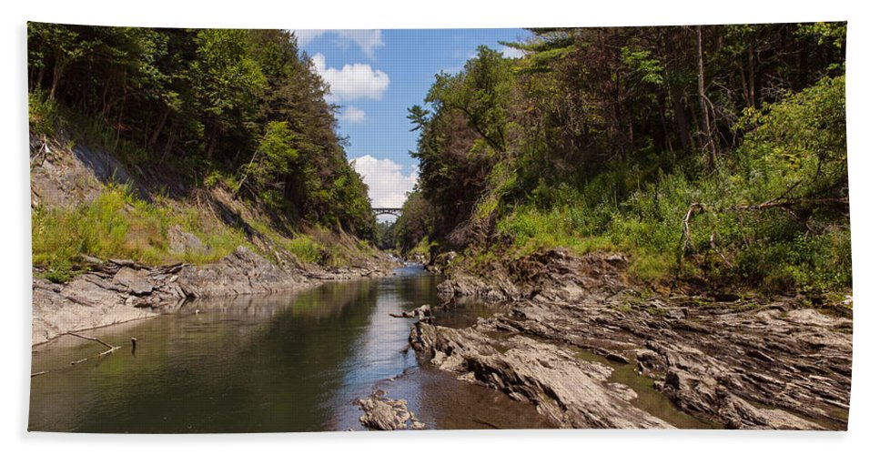 Tree Hand Towel featuring the photograph Quechee Gorge by John M Bailey