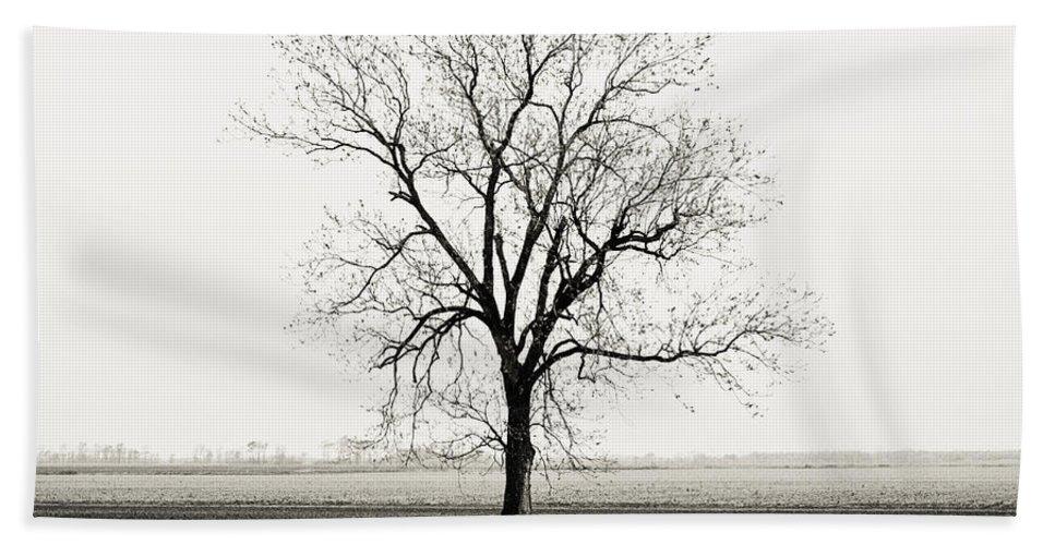 Tree Hand Towel featuring the photograph Quiet Desperation by Scott Pellegrin