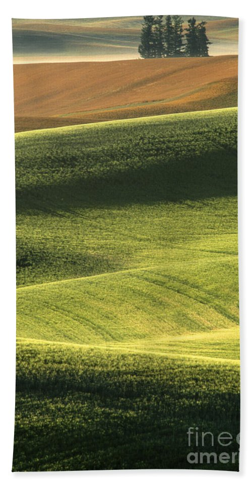Landscape;farmland;rural;palouse;countryside;country;trees;hills;rolling;vertical;green;summer;mist;fog;haze;scenic;scenics;landscapes;sunrise;bucolic;sandra;bronstein;fine;art;photography;abstract;abstracts;pattern;patterns;pullman;washington;iconic;western;united;states;america;out West;travel;tourism;tranquil;harvest;peaceful; Bath Sheet featuring the photograph Quiet Morning In The Palouse by Sandra Bronstein