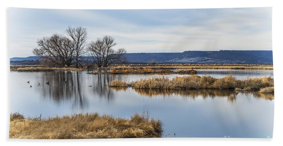 Water Bath Sheet featuring the photograph Quiet Wetlands by Dianne Phelps