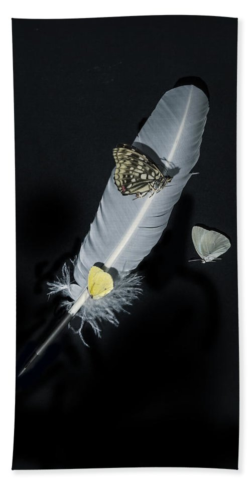 Quill Hand Towel featuring the photograph Quill With Butterflies by Joana Kruse