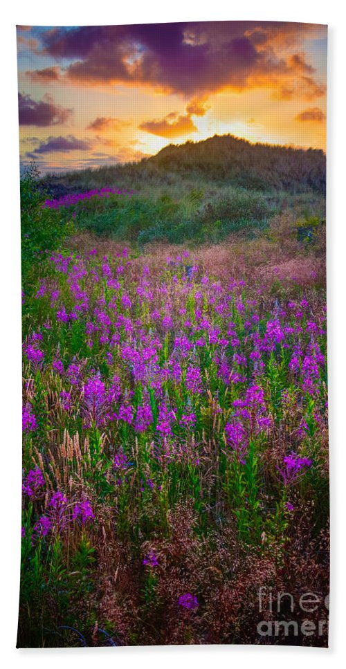 Danish Hand Towel featuring the photograph Raabjerg Fireweeds by Inge Johnsson