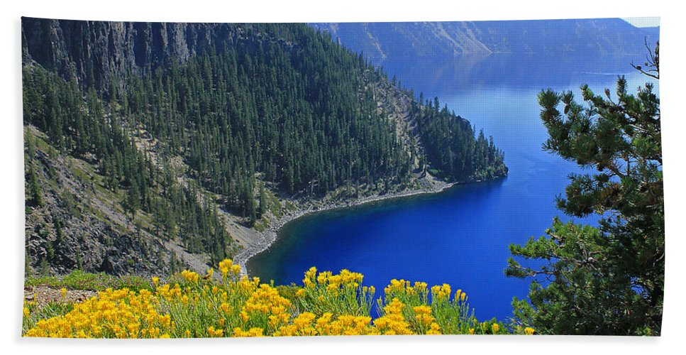 Rabbit Brush Bath Towel featuring the photograph D2m5622-rabbit Brush At Crater Lake by Ed Cooper Photography